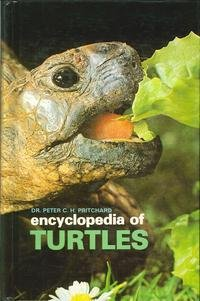 Cover of Encyclopedia of Turtles