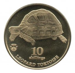biafra-2018-10-shillingov
