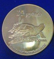 tatarstan-2013-25-rublej